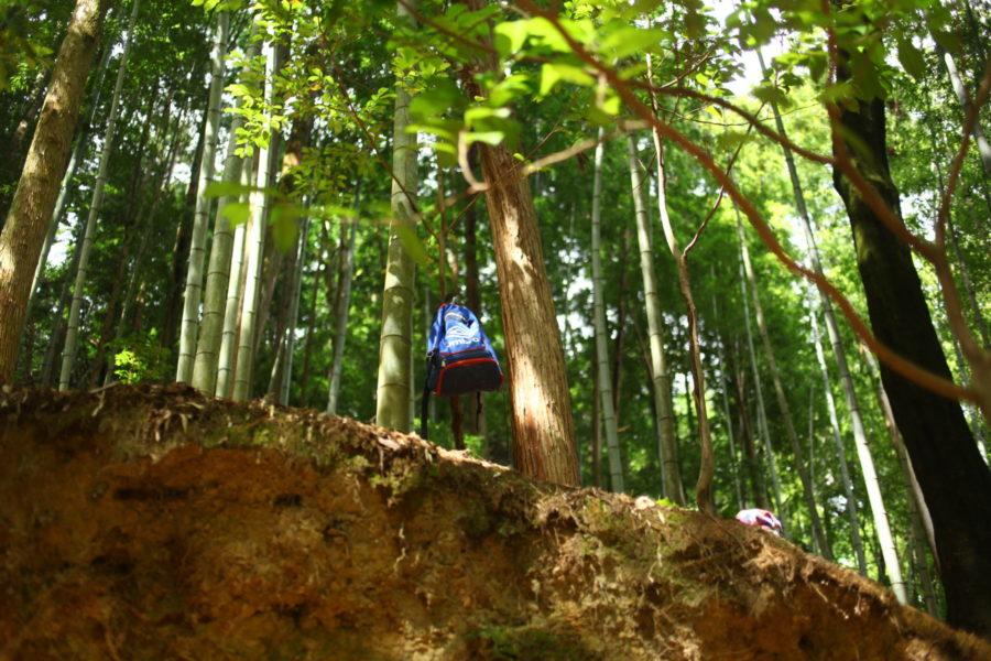 枝にカバン
