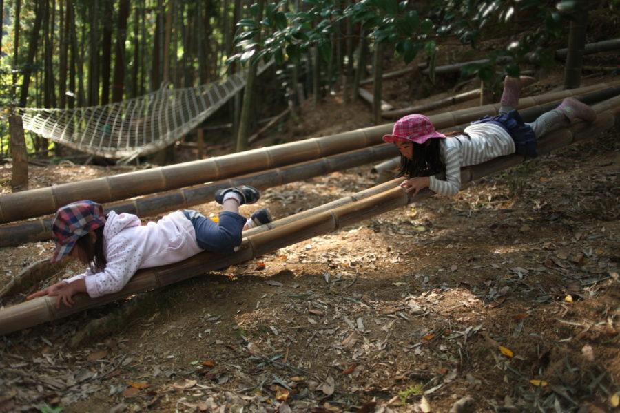 竹を滑り降りる