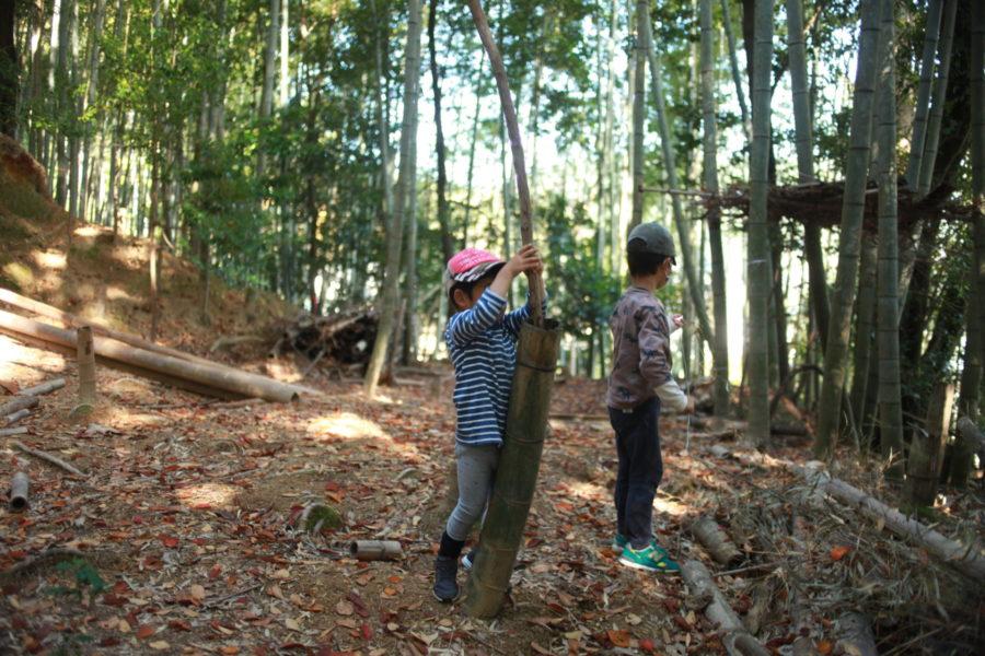 竹林で遊ぶ