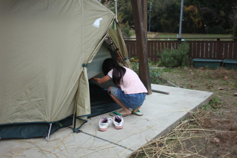テントを見に来る