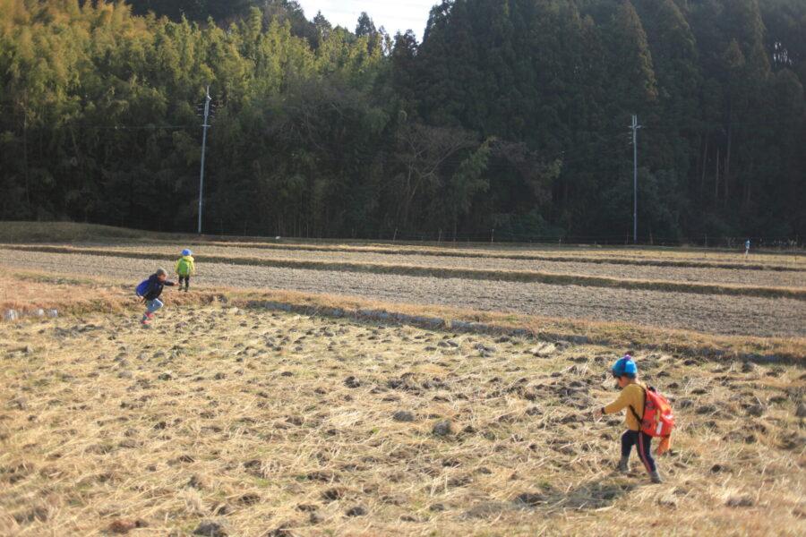 田んぼで遊ぶ